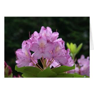 Cartão Rododendro do Lilac