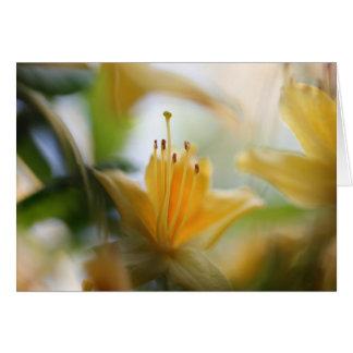Cartão Rododendros amarelos