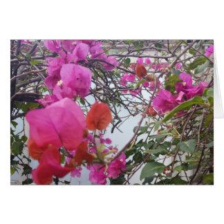 cartão romântico com folhas magentas