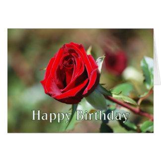 Cartão romântico da rosa vermelha do feliz anivers