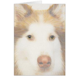 Cartão ronco do Malamute, cão de trenó