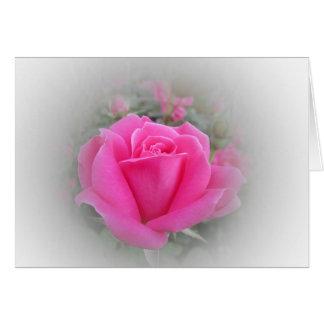 Cartão Rosa do rosa com branco