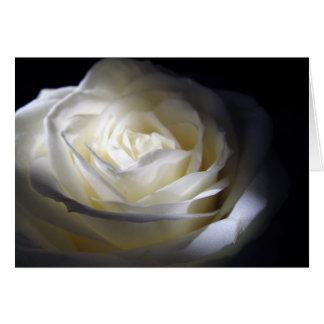 Cartão Rosa preto e branco
