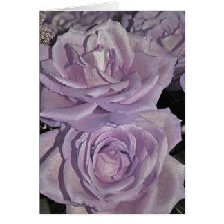 Cartão Rosas da lavanda