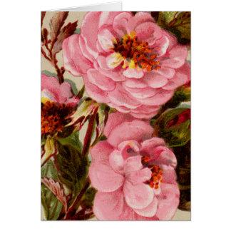 Cartão Rosas do rosa do conjunto do vintage