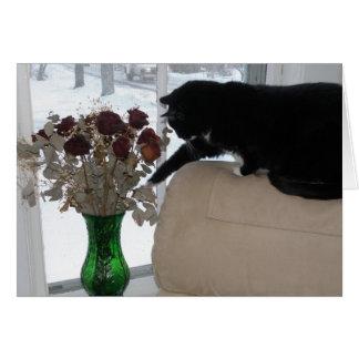 Cartão Rosas e o gato
