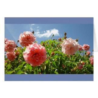 Cartão Rosas no jardim de Monet