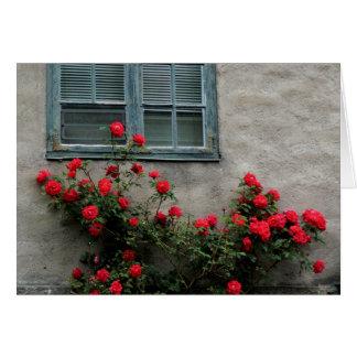 Cartão Rosas noruegueses
