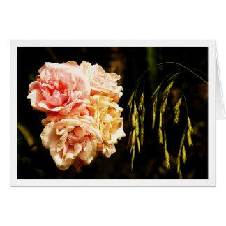Cartão Rosas para você