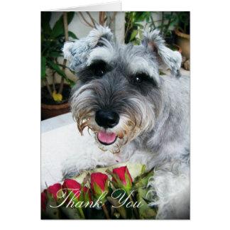 Cartão Rosas para você - obrigado