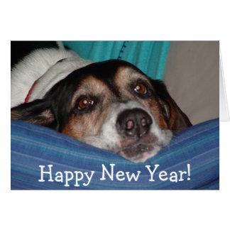 Cartão roscoe_newyear, o feliz ano novo!