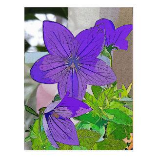 Cartão roxo da flor, violeta, três flores