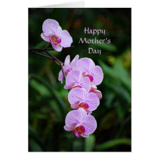 Cartão roxo da orquídea do Phalaenopsis do dia das