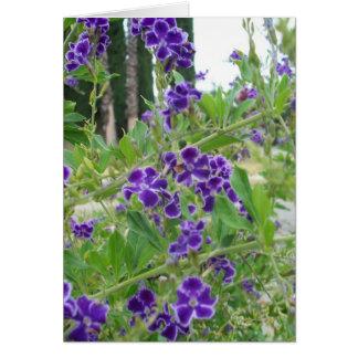Cartão roxo das flores
