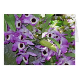 cartão roxo do vazio da orquídea