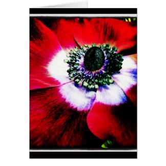 Cartão roxo e vermelho do vazio da anêmona