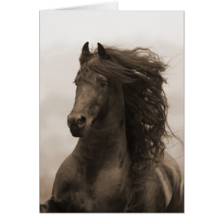 Cartão Running do cavalo do frisão