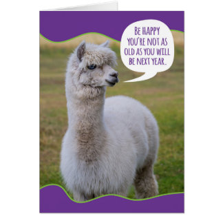 Cartão Sabedoria engraçada do aniversário do lama da