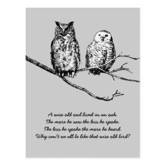 Cartão sábio da sabedoria da coruja