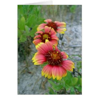 Cartão Sacola do Wildflower do Gaillardia (flor geral)