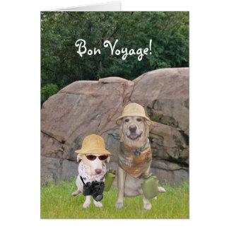 Cartão Safari do bon voyage