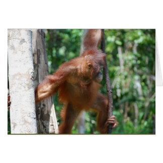 Cartão Salvar animais selvagens dos grandes macacos