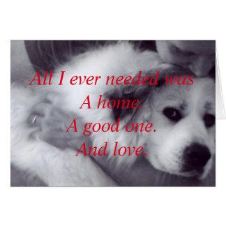Cartão Salve um animal carente