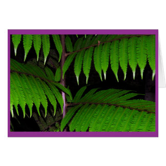 Cartão Samambaias tropicais