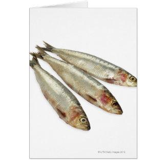 Cartão Sardinhas (sardinhas)