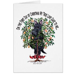 Cartão Scottie em uma árvore de pera