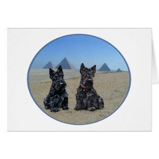 Cartão Scotties que Sightseeing em Egipto