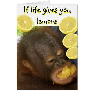 Cartão Se a vida lhe dá limões