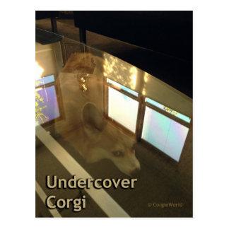 Cartão secreto do Corgi