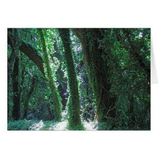 Cartão Selva havaiana