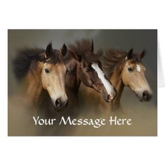 Cartão selvagem do trio dos cavalos