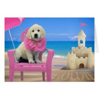 Cartão Semana 8 - Praia Goldie