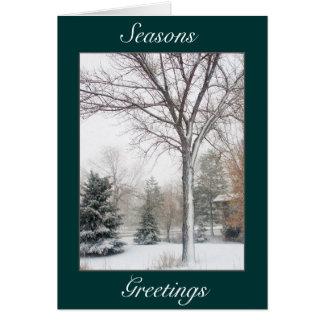 Cartão Serenidade no blizzard