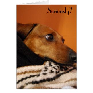 Cartão sério do filhote de cachorro