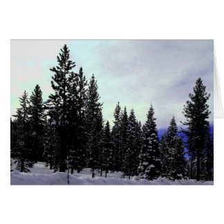 Cartão Serra inverno de Nevada