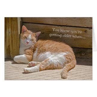 Cartão Sesta do gato do aniversário