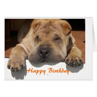Cartão Shar Pei Birthday