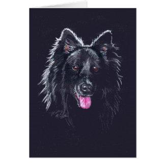 Cartão Sheepdog belga no preto
