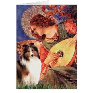 Cartão Sheepdog de Shetland 7 - anjo do bandolim