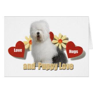 Cartão Sheepdog inglês velho