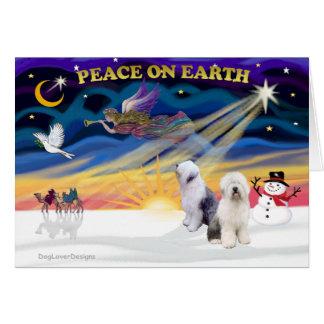 Cartão Sheepdog inglês XmasSunrise-Dois-Velho
