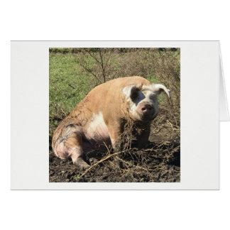 Cartão - Sheila meu porco gordo grande