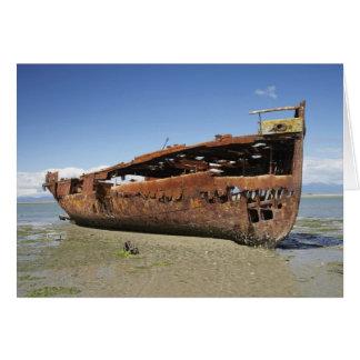 Cartão Shipwreck de Janie Seddon, Motueka, Nelson