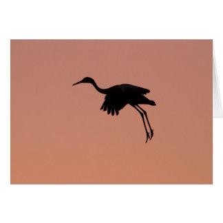 Cartão Silhueta de Sandhill em um céu cor-de-rosa do por
