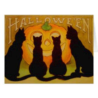 Cartão Silhueta do gato preto da abóbora da lanterna de