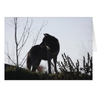 Cartão silhueta do lobo